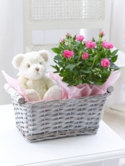 Baby Girl Gift Basket
